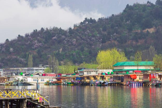 Dal Lake: The Heart of Srinagar 18