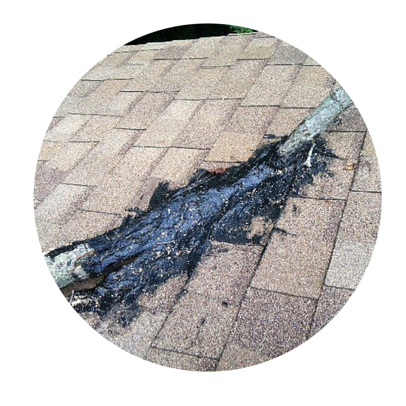 Top 10 Things To Not Do On Your Roof Blog Frost Roofing