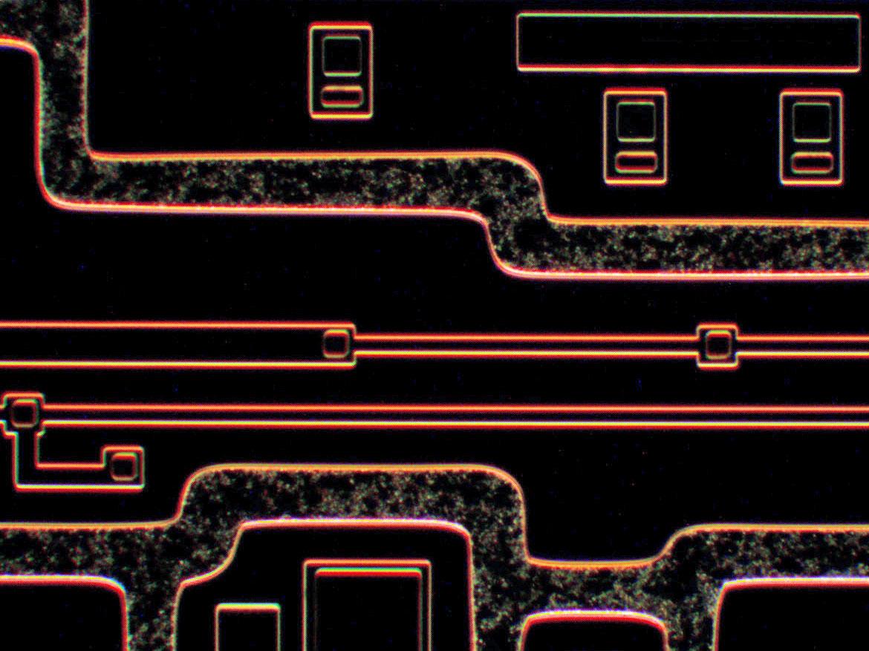 темное-поле-х200-1.jpg