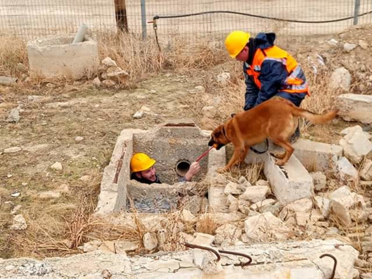Training in the dog unit (Photo: Aharon Streicher)