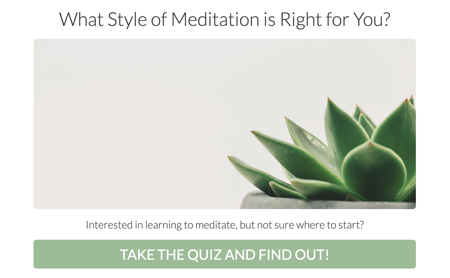 What style of meditation is right for you quiz cover with plant