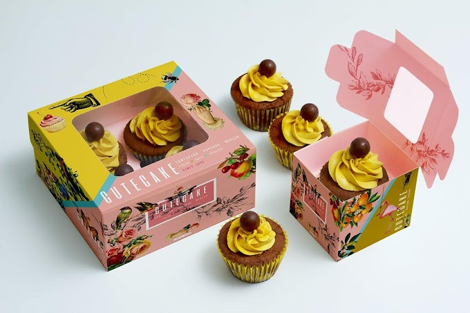 How to Improve Your Cake Business Through Cake Boxes?