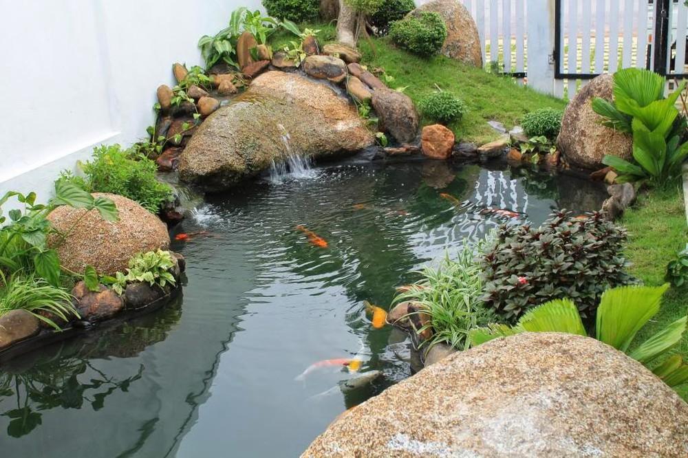 Image result for thiết kế hồ cá koi sân vườn