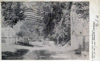 Bonnyvale Road in 1907
