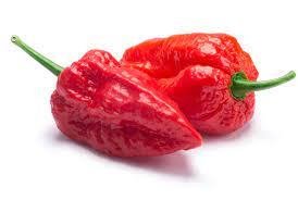 Two shiny red peppers.