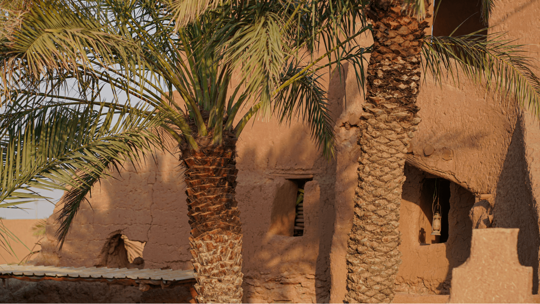 madinah, palm trees, medina, hijrah meaning