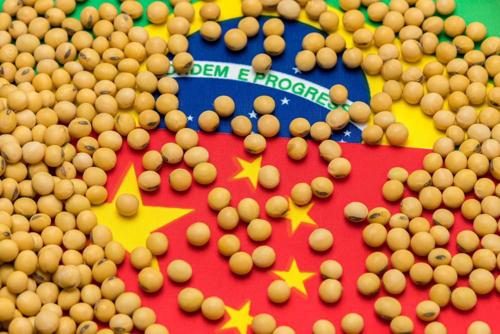 China deve continuar sendo o principal destino do grão brasileiro. (Fonte: Shutterstock/J.J. Gouin/Reprodução)