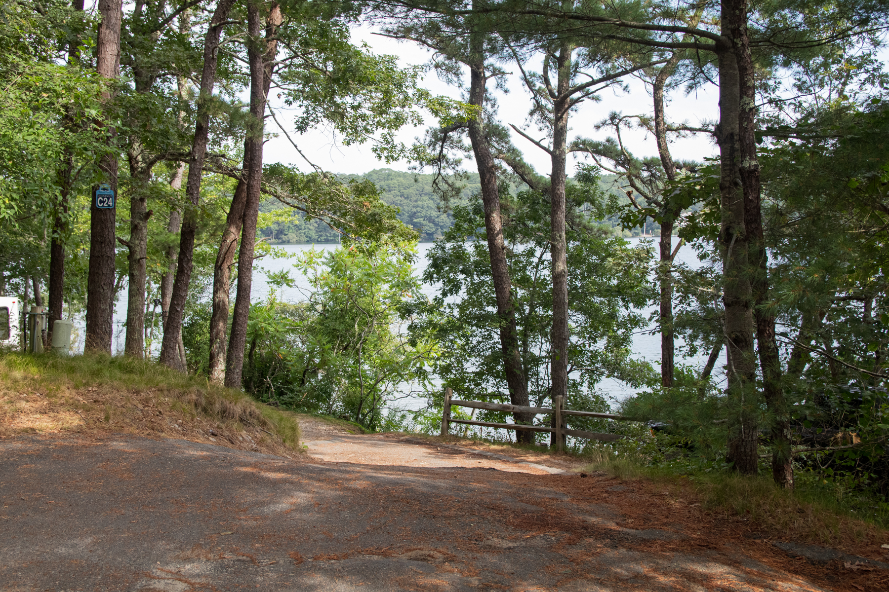 Wooded campground at Peters Pond RV Resort