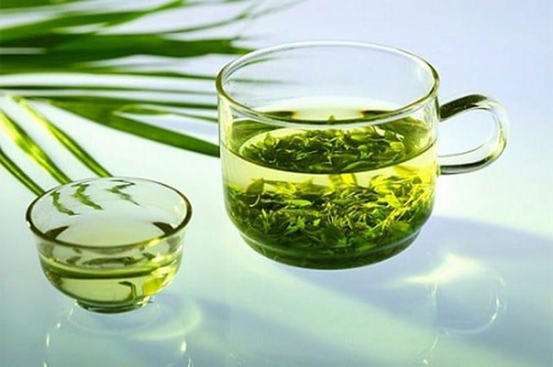 Lá trà xanh bảo vệ tổn thương da khỏi các tia cực tím. (Ảnh qua suckhoedoisong.vn)