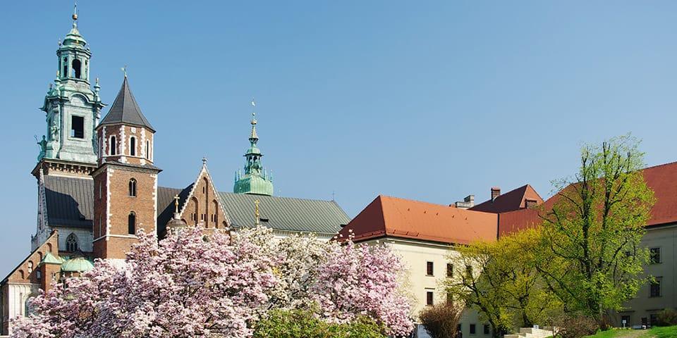 Den flotte Wavel-katedral.