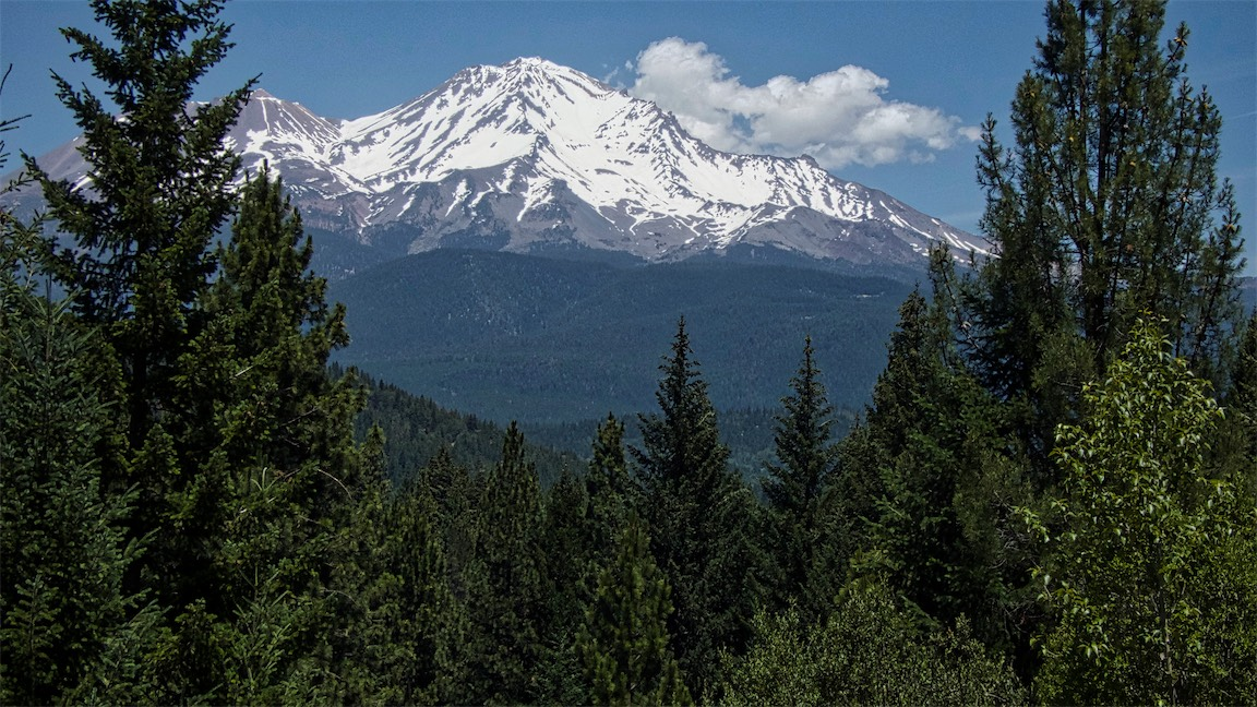 Mighty Shasta 4.jpg