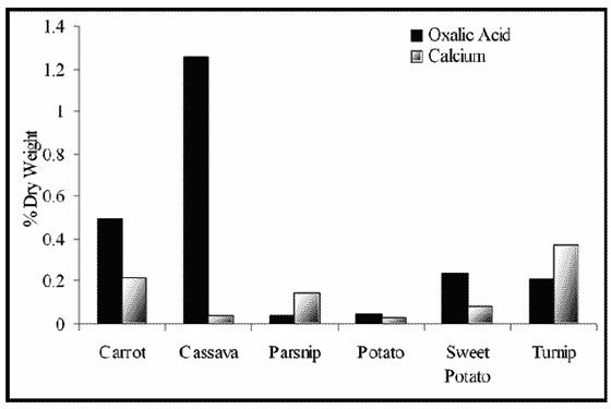 Oxalic acid and calcium content of tubers
