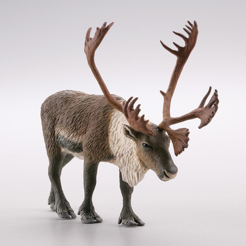 KAIYODO / 盒玩 / WILD RUSH系列 真・世界動物誌 極地北極圏編 / 全5種 一中盒8入販售 *8