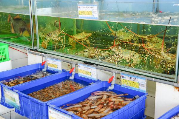 thùng nhựa nuôi cá tphcm