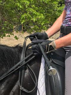 всадник держит кнут, чтобы исправить положение руки на лошади