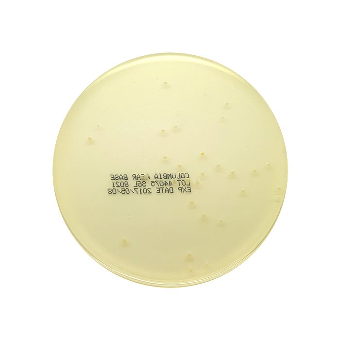 Uninoculated Columbia agar base