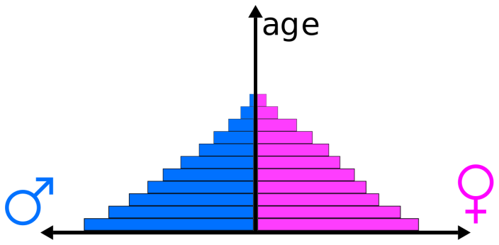 http://upload.wikimedia.org/wikipedia/en/thumb/6/6a/Population_pyramid_example.svg/1280px-Population_pyramid_example.svg.png