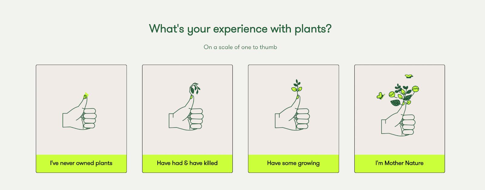 Screenshot of Rooted's plant quiz