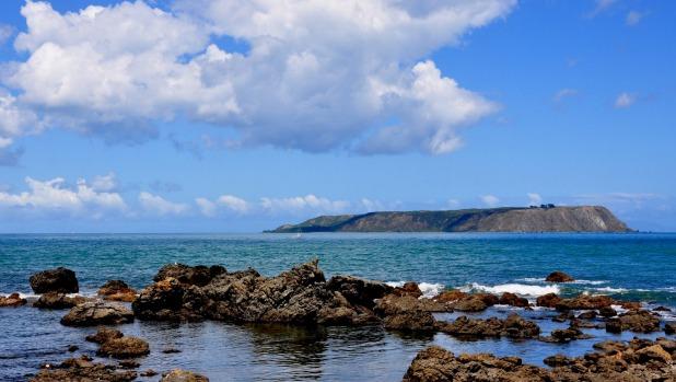 Image result for mana island porirua