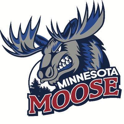 Image result for minnesota moose