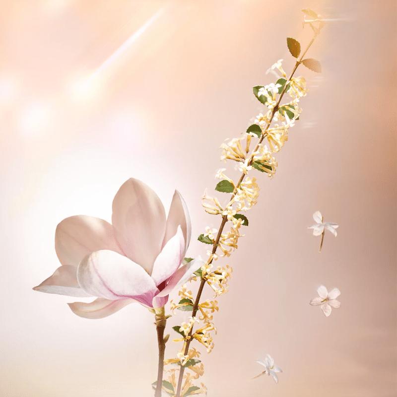 น้ำหอมกลิ่น Floral สำหรับคนเกลียดดอกไม้! จาก Louis Vuitton's  02