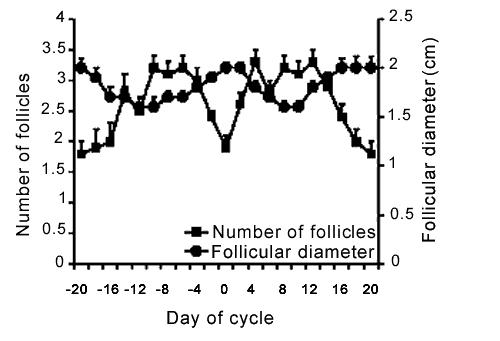 Relación inversa entre el número de folículos y el diámetro folicular (cm) en hembras camélidas no apareadas. (El día 0 se toma como el día en el cual el folículo más grande alcanza su máximo diámetro).