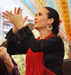Marina Tamayo 'Flamenco Australia.png