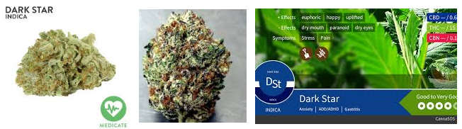 DARK STAR MARIJUANA STRAIN WITH CBD