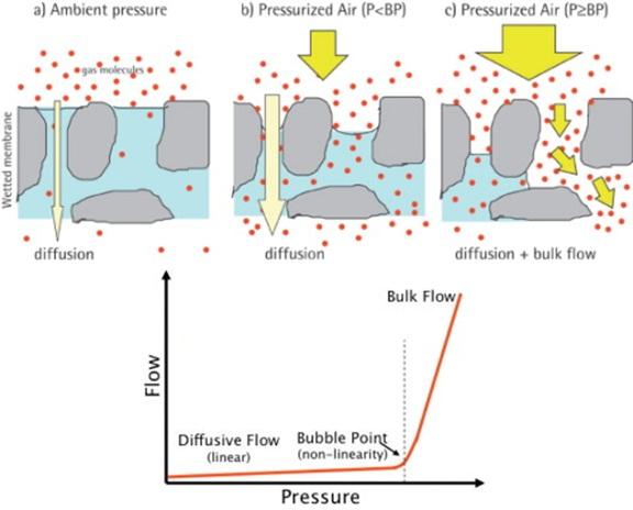 bulk-diffusive flow.jpg