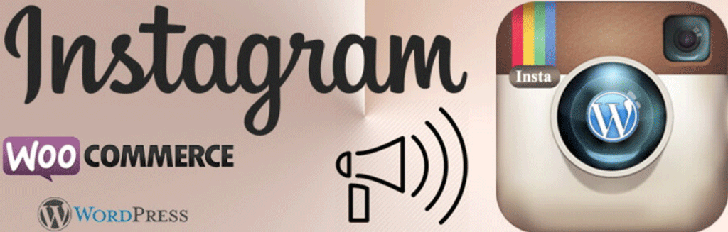 logotipo do wp instagram post and widget