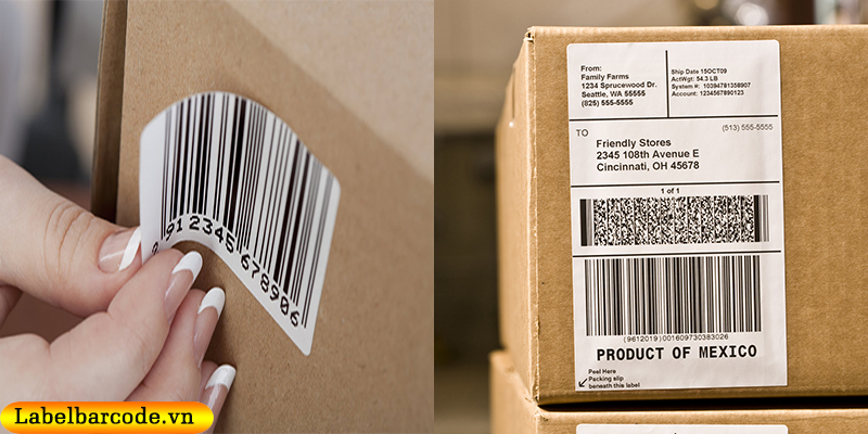 Ứng dụng giấy decal in mã vạch dán thùng carton