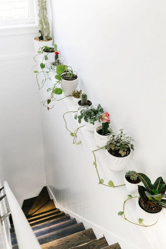 Add Some Natural Vibe to the hallway