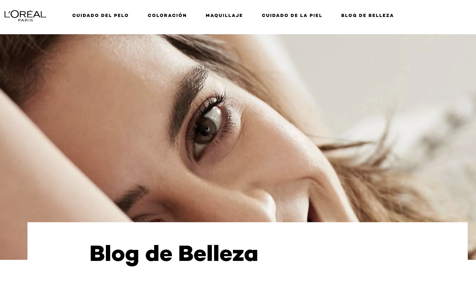 blog para seo