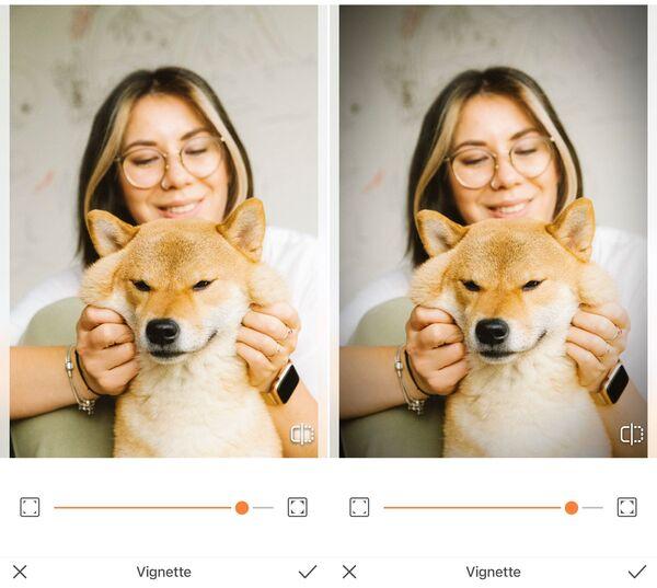 Mulher segurando as bochechas do seu cachorro