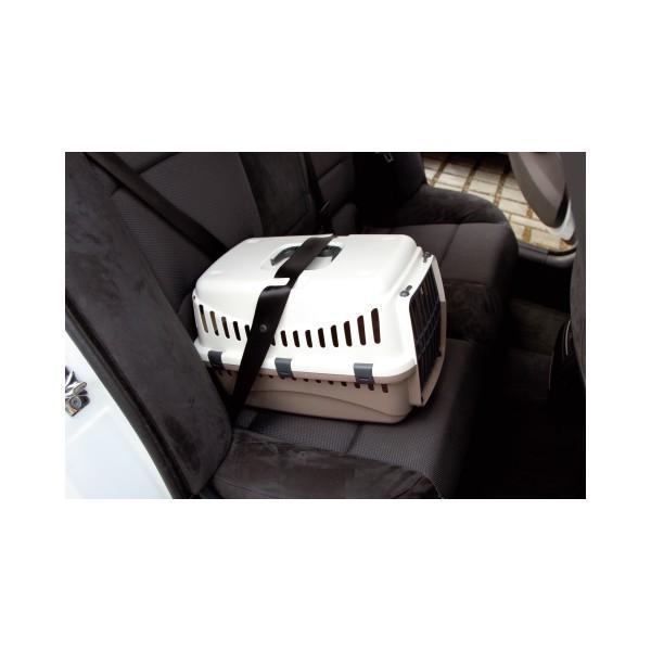 """ésultat de recherche d'images pour """"chat en voiture caisse"""""""