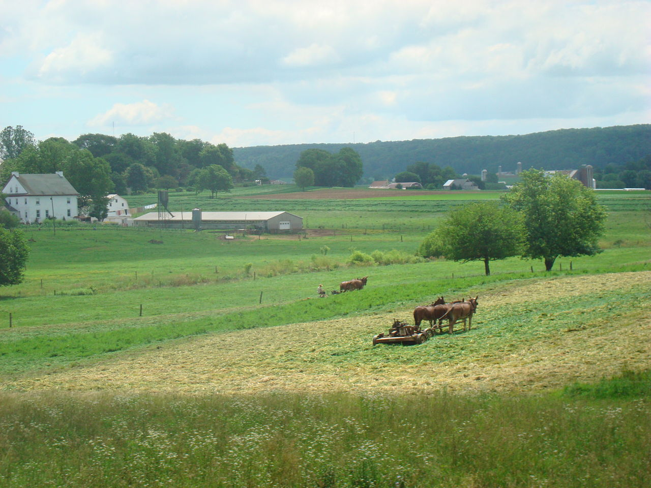 https://upload.wikimedia.org/wikipedia/commons/thumb/6/6c/Amish_Farm_Lancaster_County%2C_PA_6.jpg/1280px-Amish_Farm_Lancaster_County%2C_PA_6.jpg
