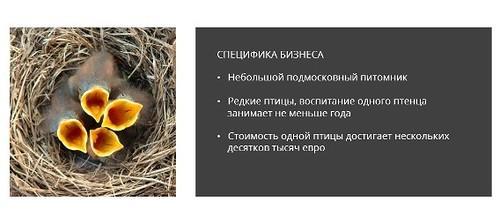 https://img-fotki.yandex.ru/get/16118/127573056.7c/0_110051_6e36d770_L.jpg