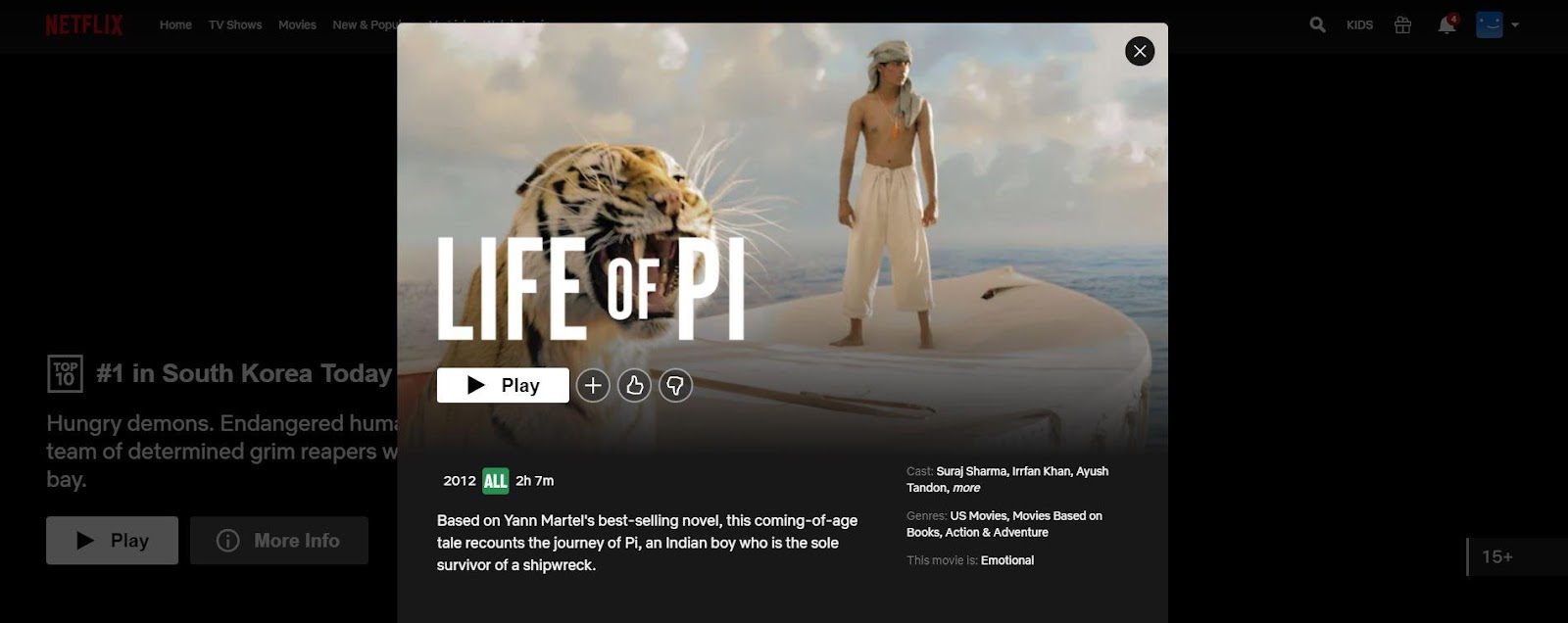 How to Unblock Life of Pi on Netflix