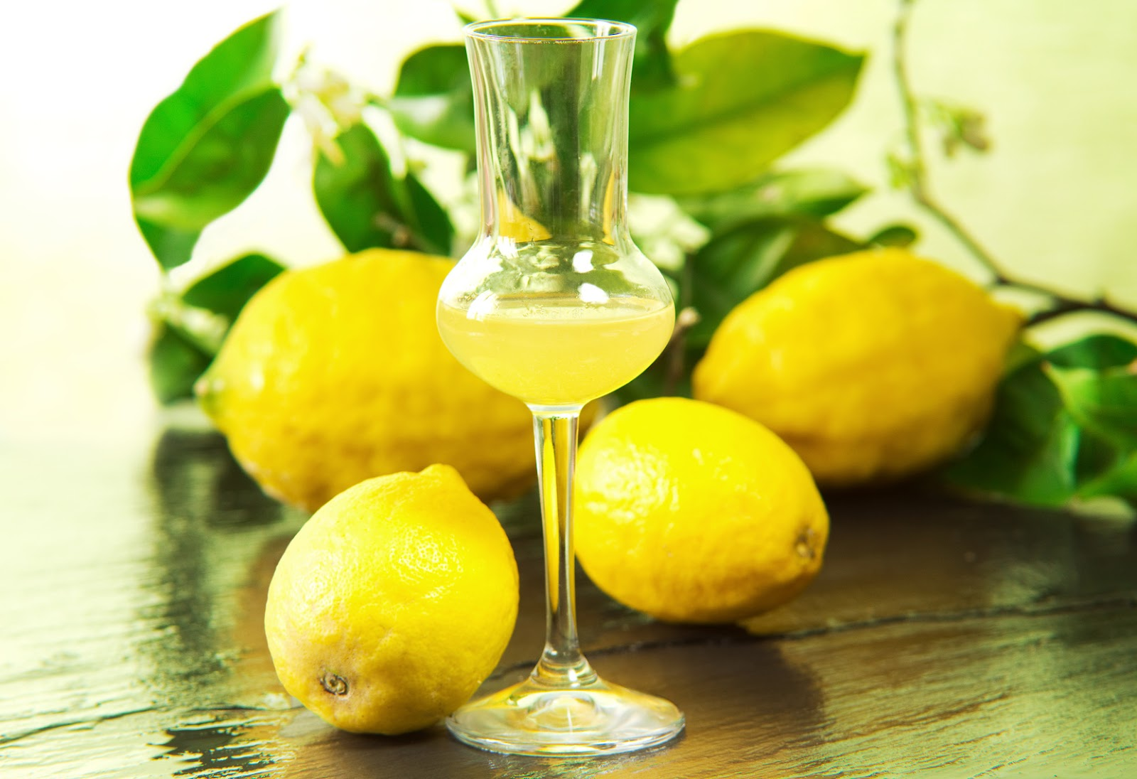 lemons and limoncello.jpg