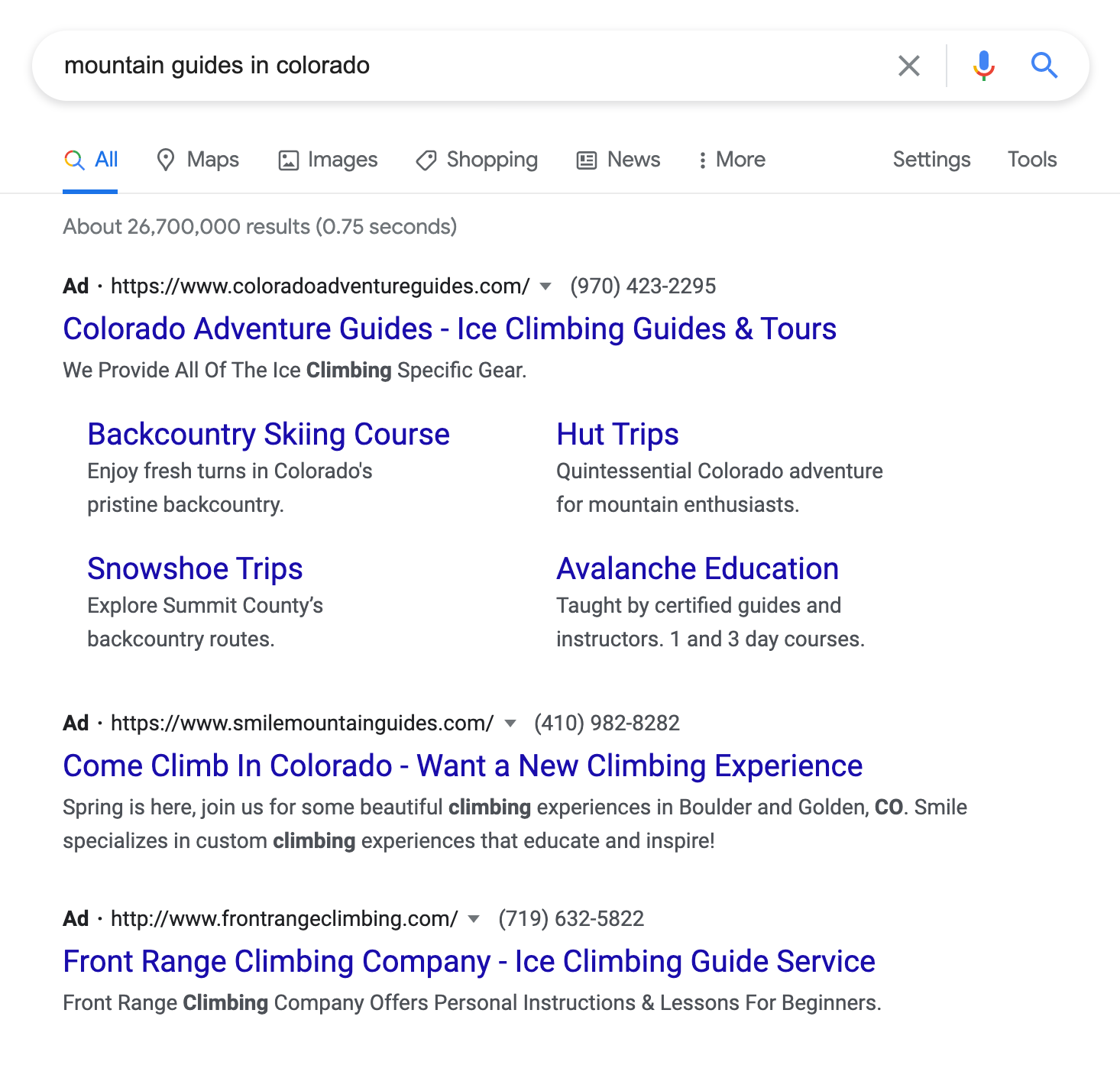 google ad results