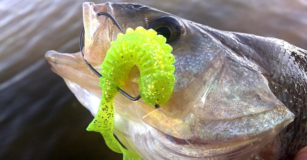 Understanding Soft Plastic Lure Design Characteristics | The Custom  Fisherman