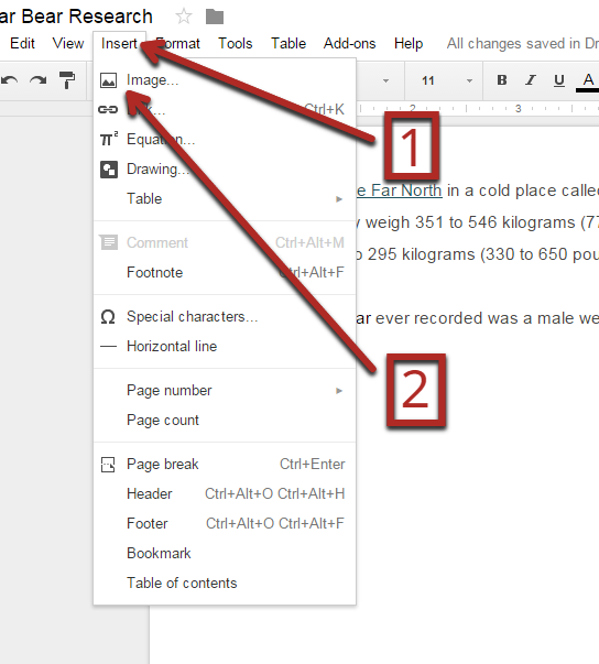 Inserting Images In Google Docs