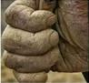 C:\Users\Lenovo\Desktop\FC\Farmers' bill protest31.png