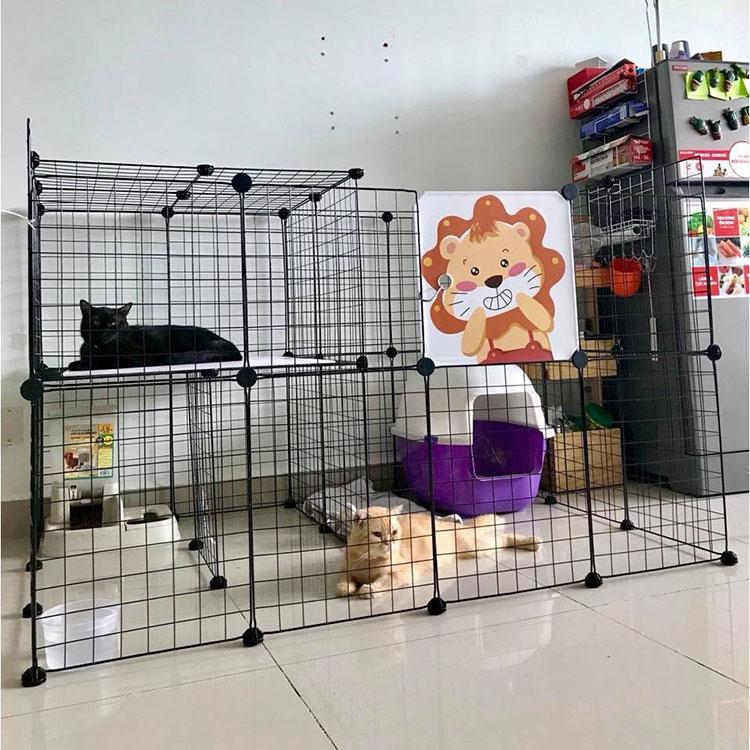 Cách chọn chuồng mèo đẹp