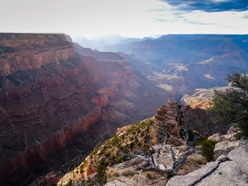 The Grand Canyon has something for everyone - just bring your sunscreen.