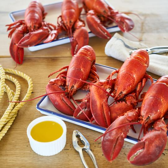 Lobster on a tray from Lukes Lobster