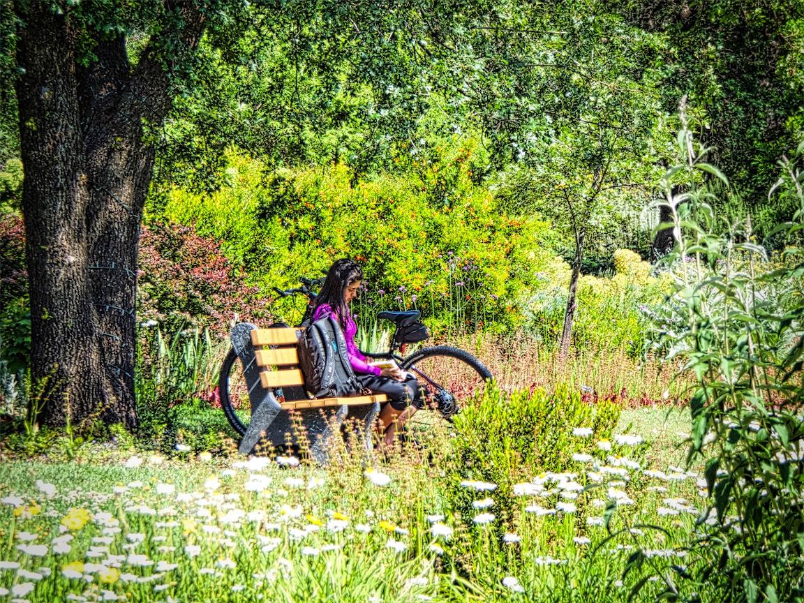 Arboretum Spring Pleasure.jpg