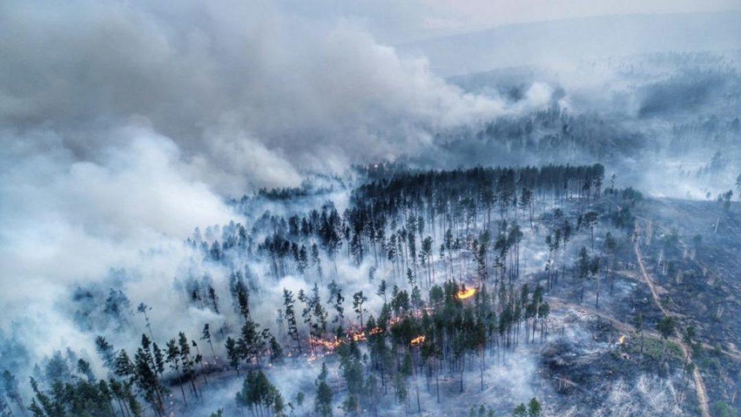 La Russie ne réagit pas au rapport du GIEC, malgré des incendies historiques en Sibérie.