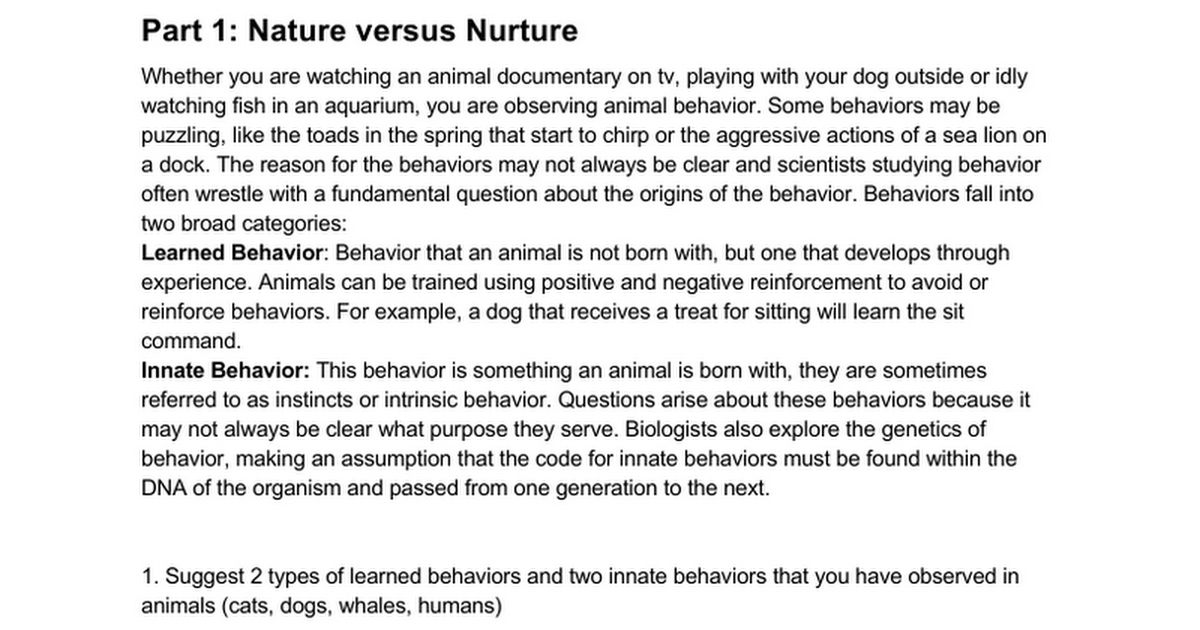 Behavior Summary Google Docs