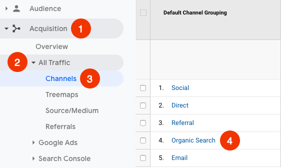 see organic search traffic in google analytics